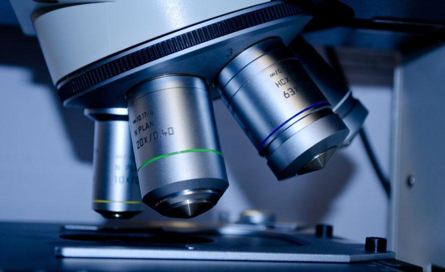 Рассмотрим стволовую клетку: размышления учителя биологии над призванием