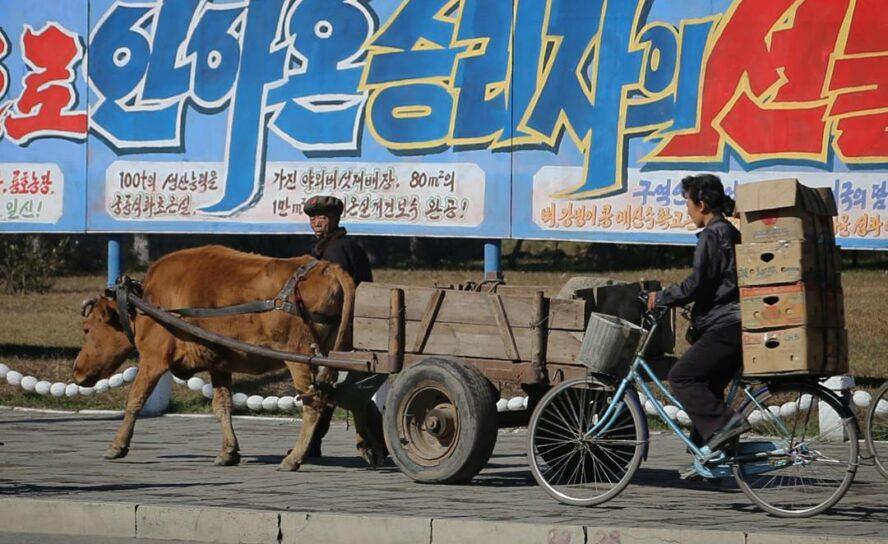 Народ Северной Кореи изголодался физически и духовно